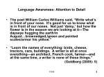 language awareness attention to detail