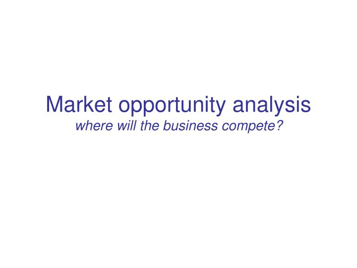market opportunity analysis where will the business compete n.