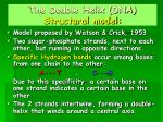 the double helix dna structural model