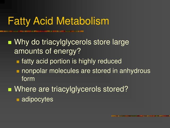 Fatty acid metabolism2