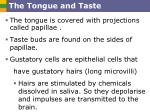 the tongue and taste