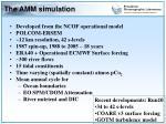 the amm simulation