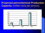 projected petrochemical production capacity million tons per annum