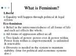 what is feminism1