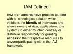 iam defined