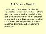 iam goals goal 1
