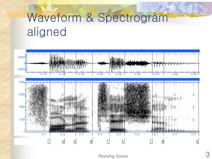 Waveform spectrogram aligned