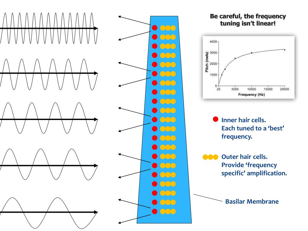 Be careful, the frequency tuning isn't linear!
