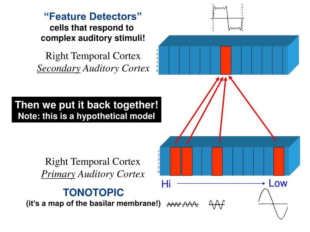 """""""Feature Detectors"""""""