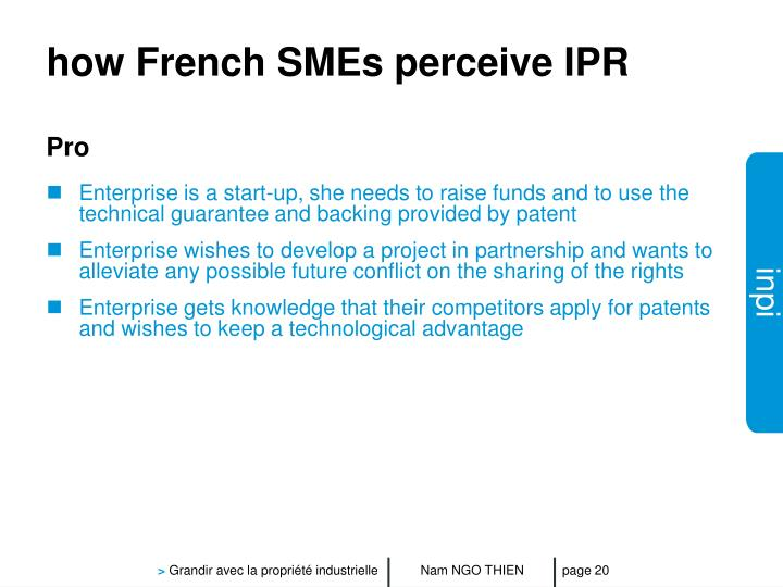 how French SMEs perceive IPR
