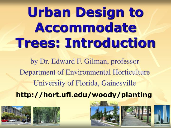 urban design to accommodate trees introduction n.