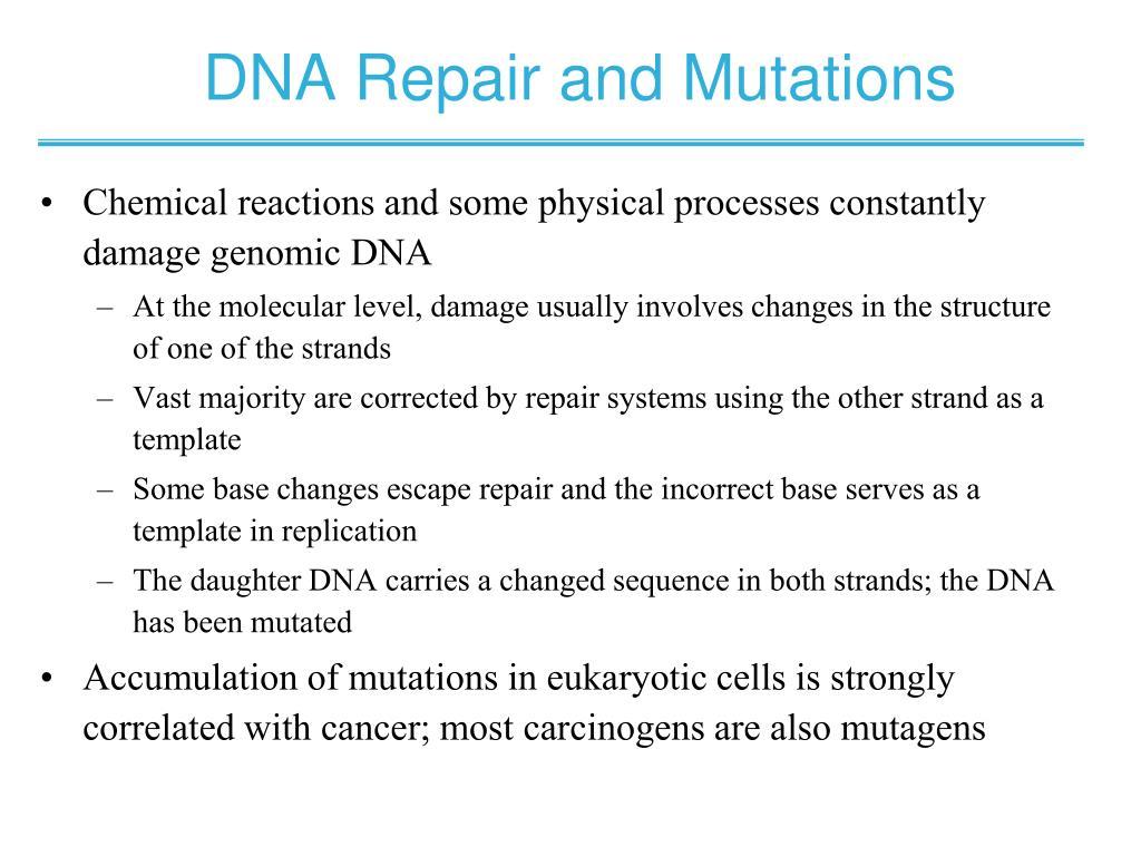 DNA Repair and Mutations