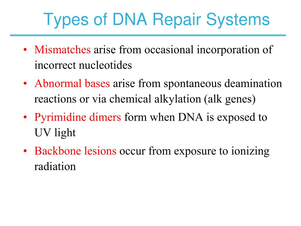 Types of DNA Repair Systems