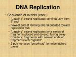 dna replication5