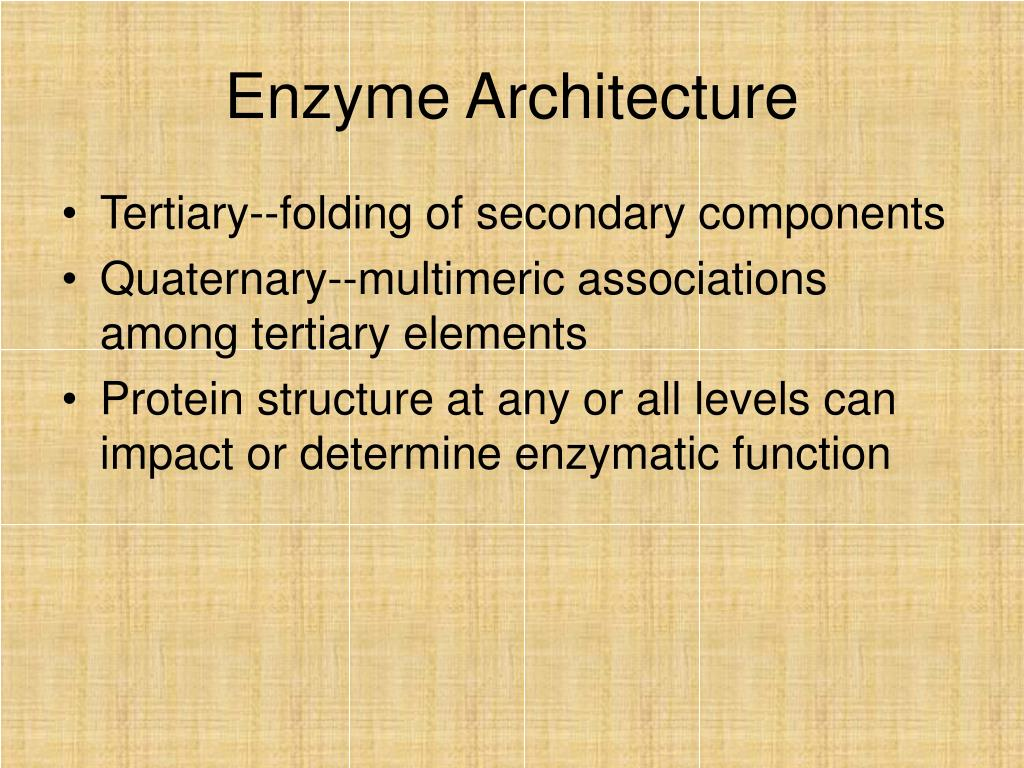 Enzyme Architecture