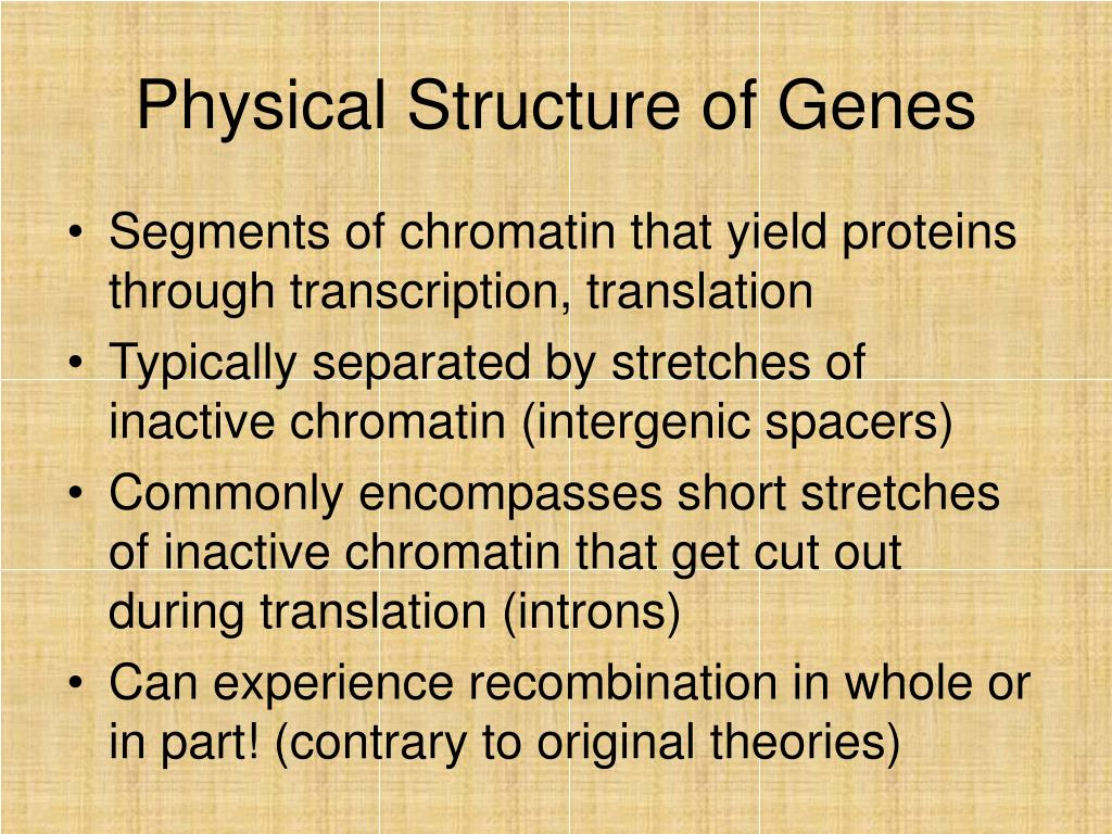 Physical Structure of Genes
