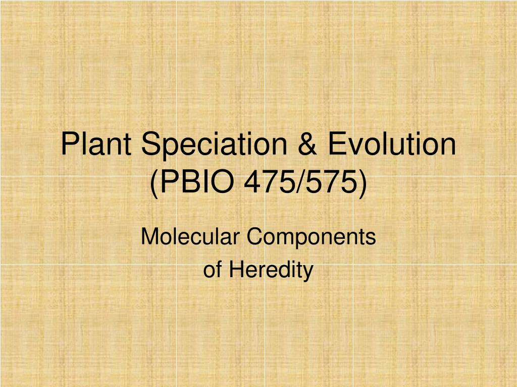 plant speciation evolution pbio 475 575 l.