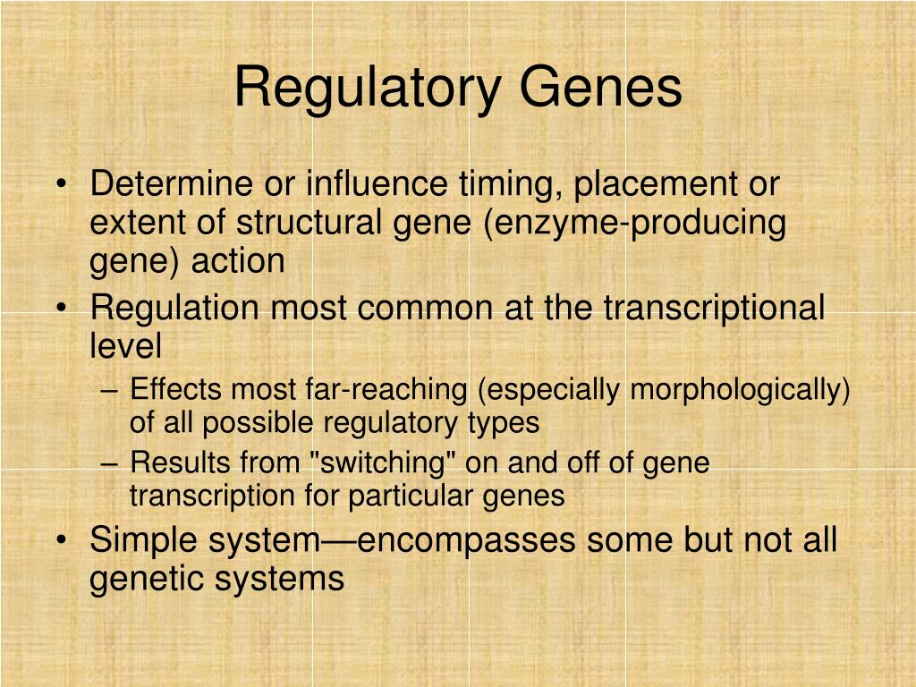 Regulatory Genes