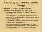 regulatory vs structural genetic change23
