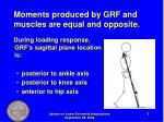 moments produced by grf and muscles are equal and opposite