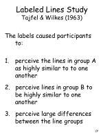 labeled lines study tajfel wilkes 19631