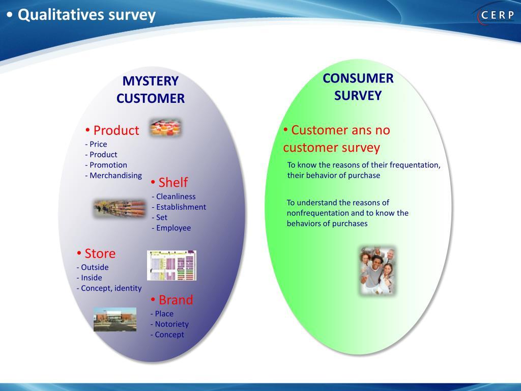 Qualitatives survey