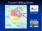 canada s killing fields
