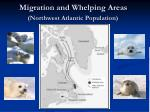 migration and whelping areas northwest atlantic population