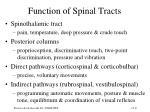 function of spinal tracts