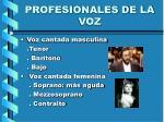 profesionales de la voz2