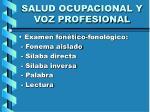 salud ocupacional y voz profesional13