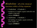 metabolism all of the chemical reactions within a living organism