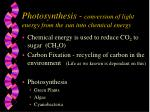 photosynthesis conversion of light energy from the sun into chemical energy
