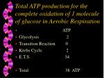 total atp production for the complete oxidation of 1 molecule of glucose in aerobic respiration