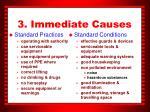 3 immediate causes