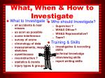 what when how to investigate