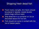 shipping fresh dead fish