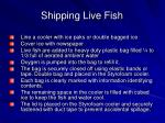 shipping live fish