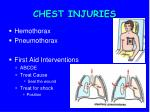 chest injuries2