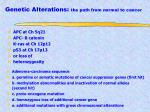 genetic alterations the path from normal to cancer