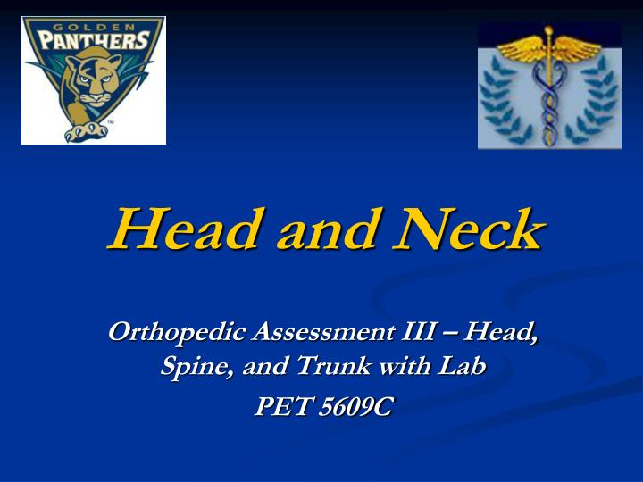 head and neck n.