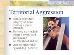 territorial aggression