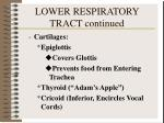 lower respiratory tract continued