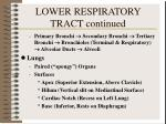 lower respiratory tract continued2