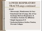 lower respiratory tract lungs continued2