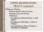 upper respiratory tract continued1