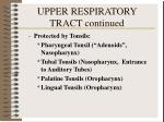 upper respiratory tract continued2