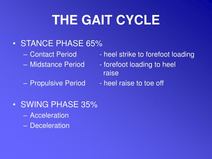 THE GAIT CYCLE