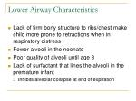 lower airway characteristics