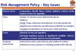 risk management policy key issues